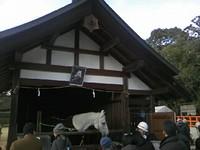 神馬のいる小屋